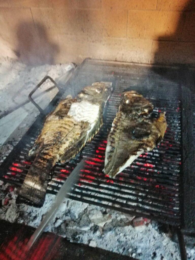 grouper kirnja restaurant trpanj