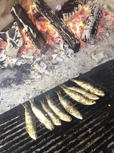 grilled adriatic sardine