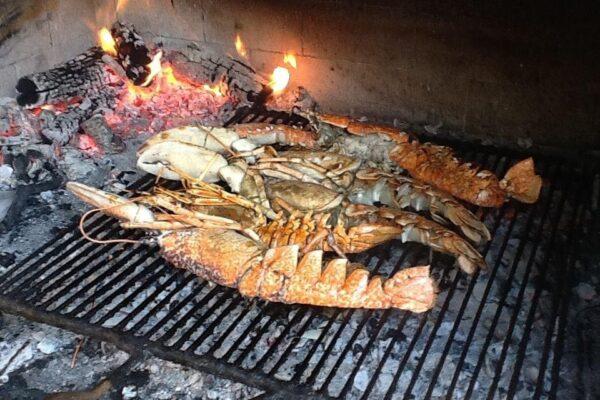 grilled adriatic lobster restaurant trpanj